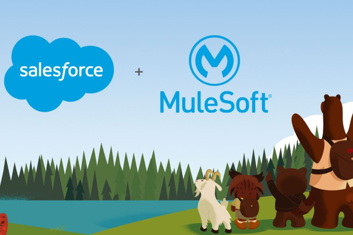 SF.Mulesoft2