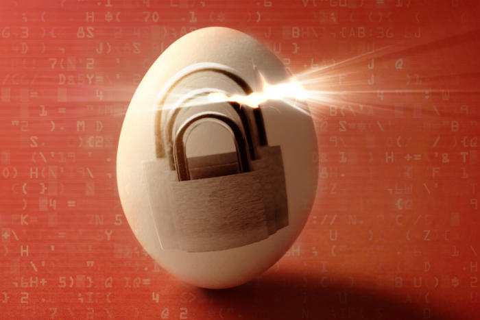 security_breach_egg_reveal_locks_binary_code_hacked-100765661-large